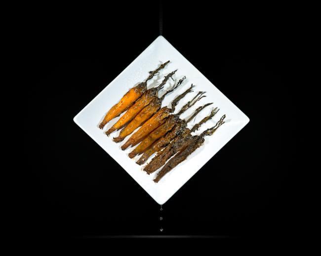 A bizarra arte da comida podre [galeria]
