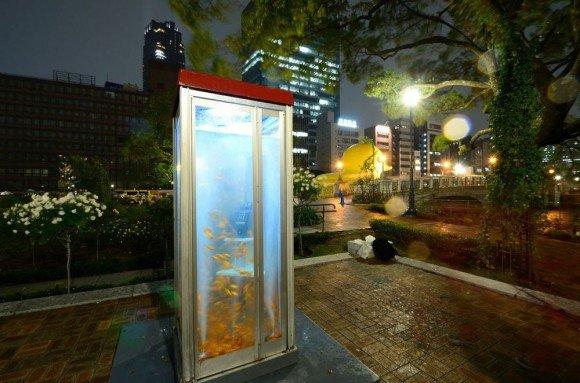 Artistas transformam cabines telefônicas em aquários [galeria]