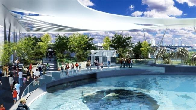 Museu de Miami deve virar parque aquático para tubarões