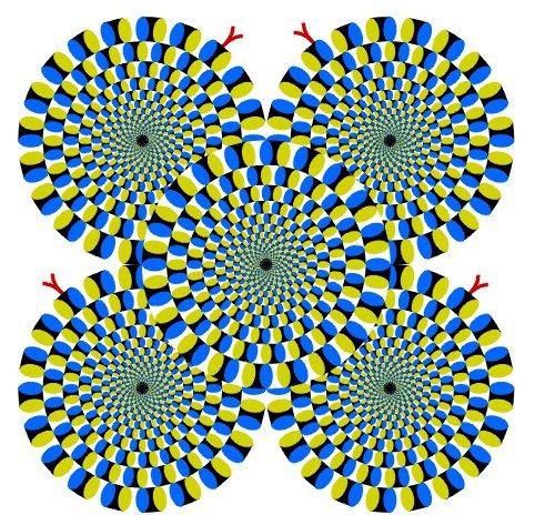 Ilusão de óptica: entenda como funcionam os círculos giratórios