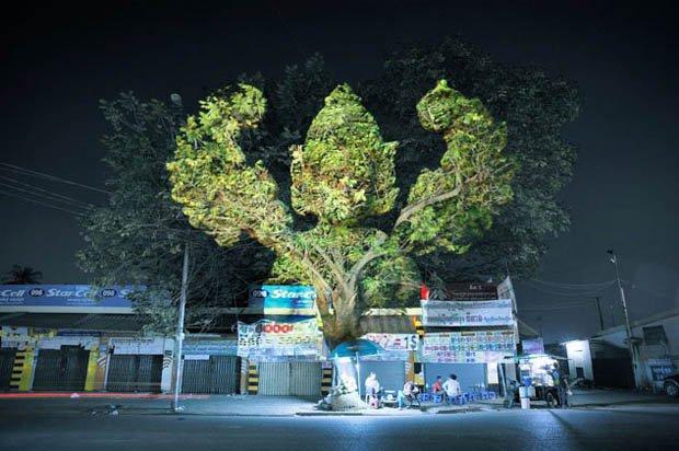 Projeções luminosas transformam árvores em deuses [galeria]