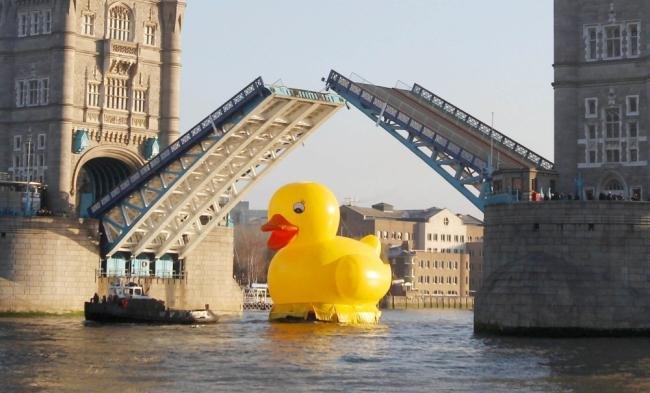 Pato de borracha gigante é avistado passeando em Londres [vídeo]