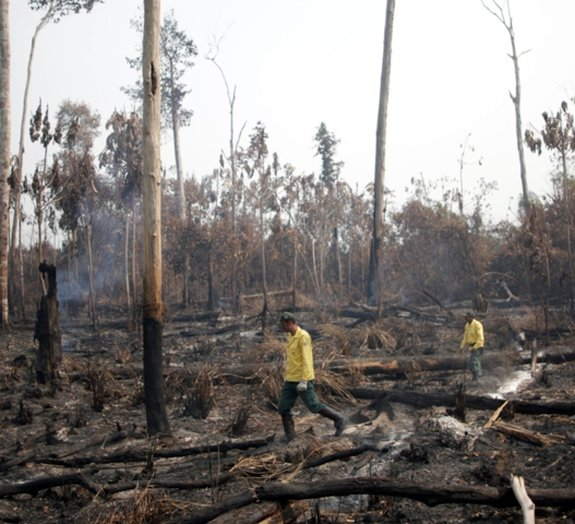 Brazilian Institute for the Environment and Renewable Natural Resources (IBAMA) fire brigade members walk in a burned area as they try to control hot points in a tract of the Amazon jungle near Apui, Amazonas State, Brazil August 11, 2020. REUTERS/Ueslei